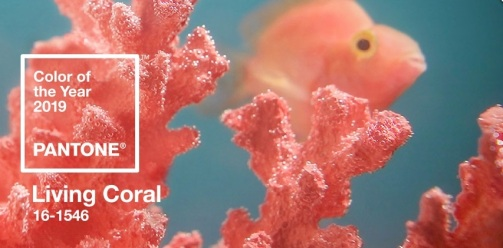 Coral, kleur van het jaar 2019